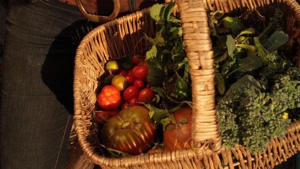 "Fresh produce from documentary ""Edible City"""