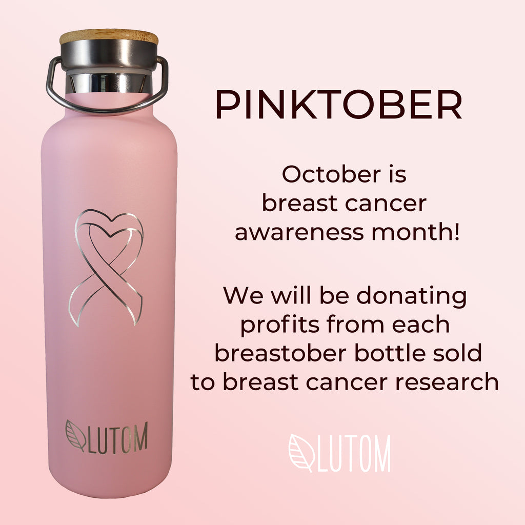 Breast Cancer Awareness Insulated Thermos Bottle