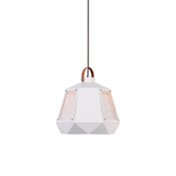 Loha Multi-color Pendant Light | Modern