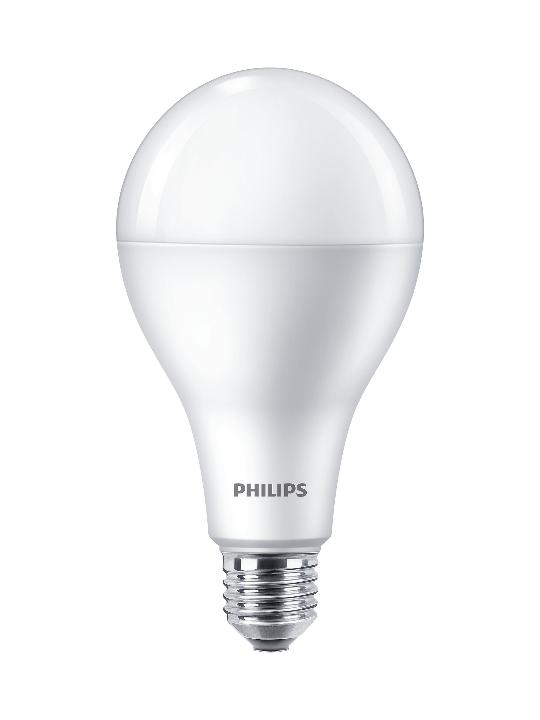 Philips LED Bulb (10 in bulk) | 19w 3000K High Lumen A80