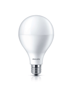 Philips LED Bulb (10 in bulk) | 27w 3000K High Lumen A110