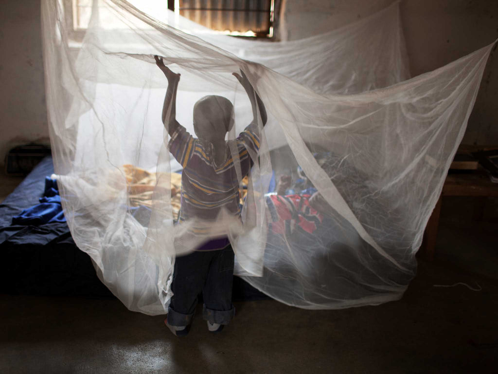 A pack of five mosquito nets