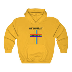 God's Covenant 2.0 Christian Faith Based Hooded Sweatshirt