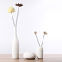 How to Choose Suitable Vases for your Home Decoration