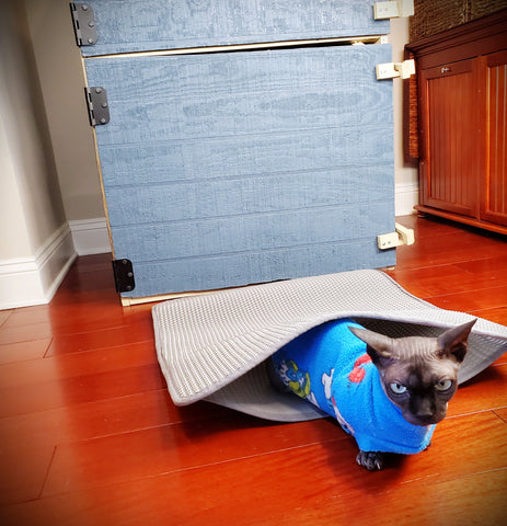 anti-tracking-cat-litter-mat
