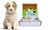 4-FURRY DOGS *REGULAR GROOMING KIT