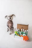 4-HAIRLESS PETS *DOG RESTORATIVE KIT