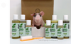 4-HAIRLESS PETS *SKINNYPIG REGULAR KIT