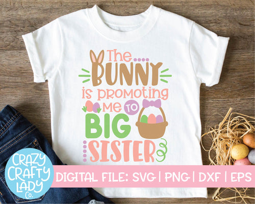 The Bunny Is Promoting Me to Big Sister SVG Cut File