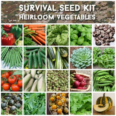 275,000 Heirloom Vegetable Survival Seeds