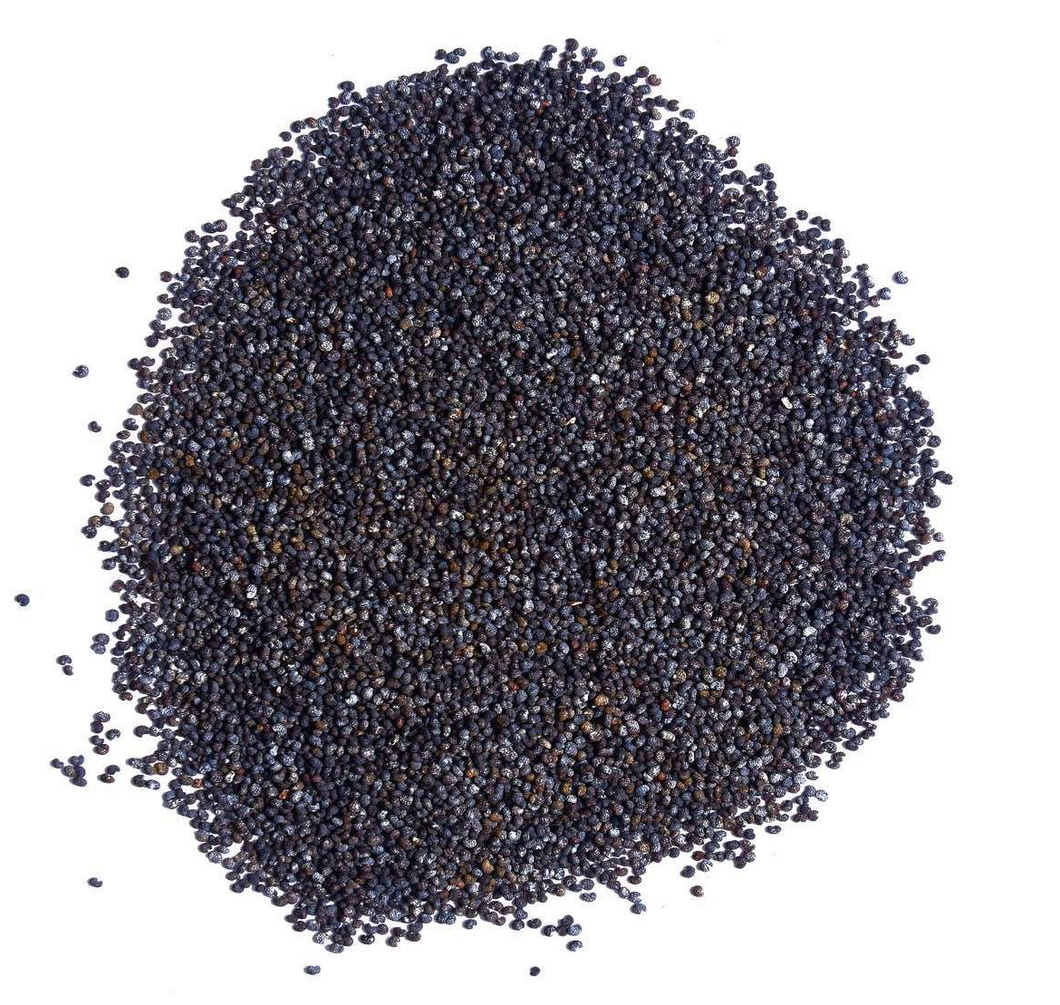 5 Pounds Poppy Seeds - England