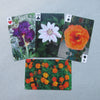 Garden Flower Numbered Card Deck