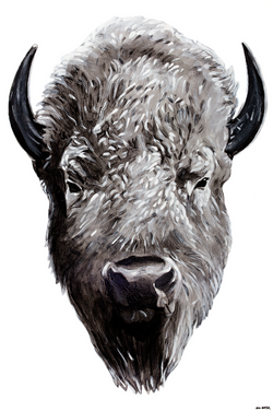 """Great White Buffalo"" by Will Hunter"