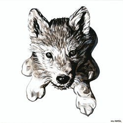 """Wolf Cub"" by Will Hunter"