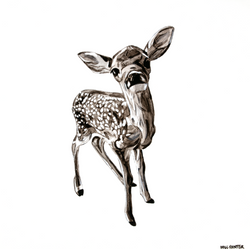 """Deer Fawn"" by Will Hunter"