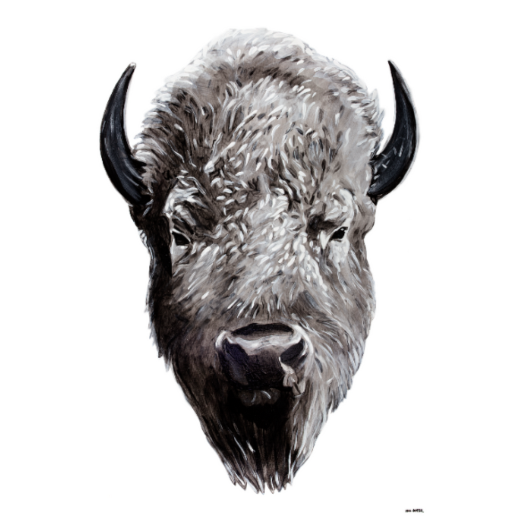 """Great White Buffalo"" by Will Hunter - headwestbozeman"