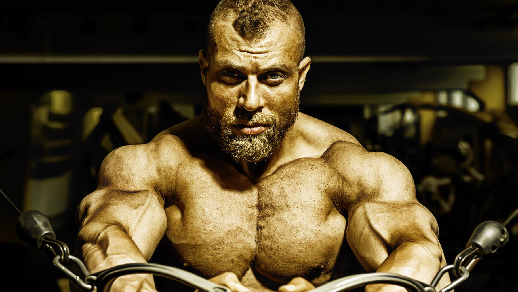 Can't Build Muscle? You Must Read This