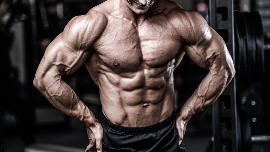 L Citrulline - Comprehensive Guide to Benefits and Dosage — Tiger