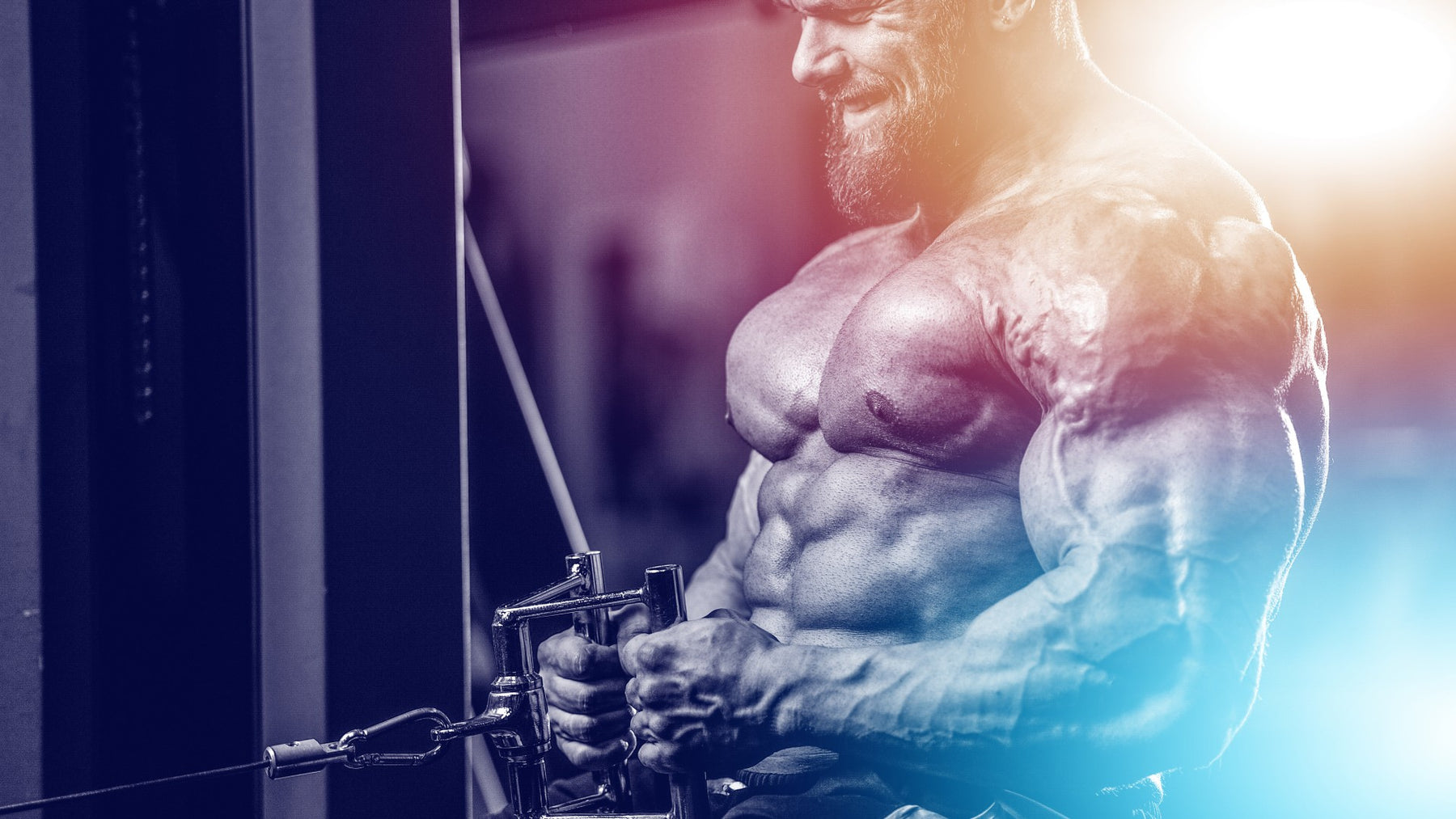 Cerberus Training - The 3-Headed Muscle Building Workout System