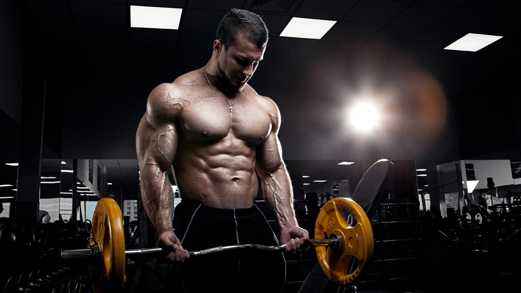 12 Tips To Building Massive Arms