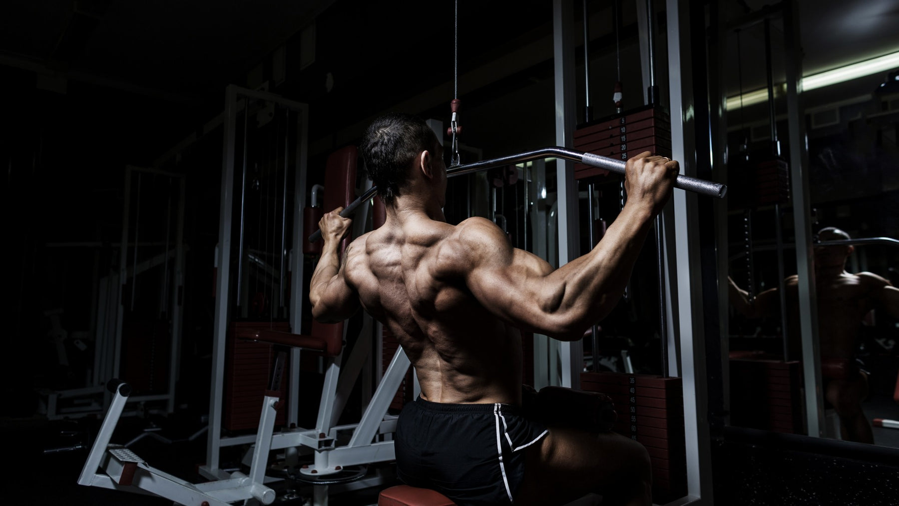 8 Must Do Back Exercises for Mass