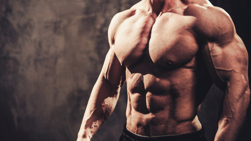 The 4 Best Bodybuilding Workout Techniques Tiger Fitness