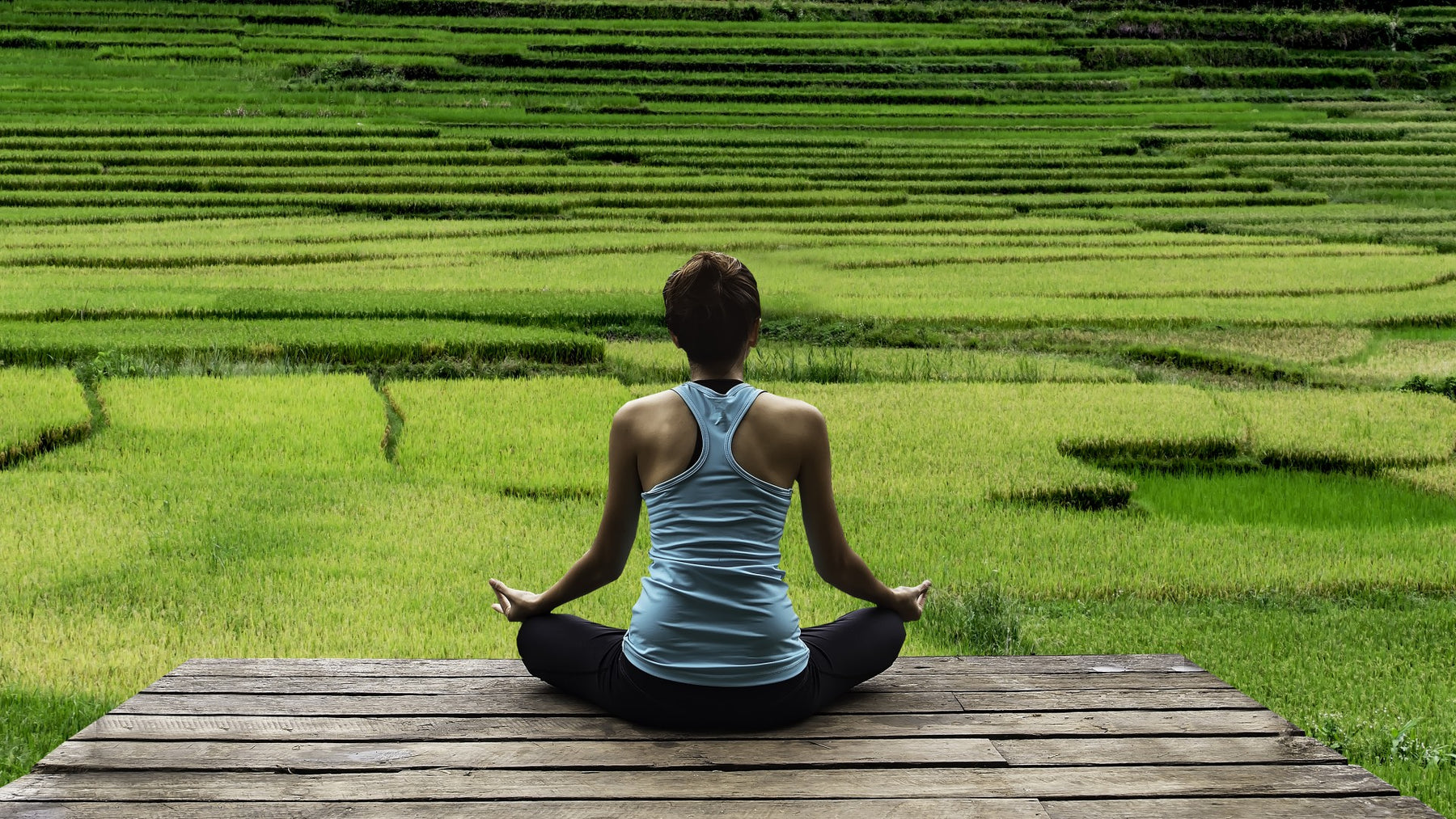 Meditation Doesn't Make You Calmer or Less Aggressive