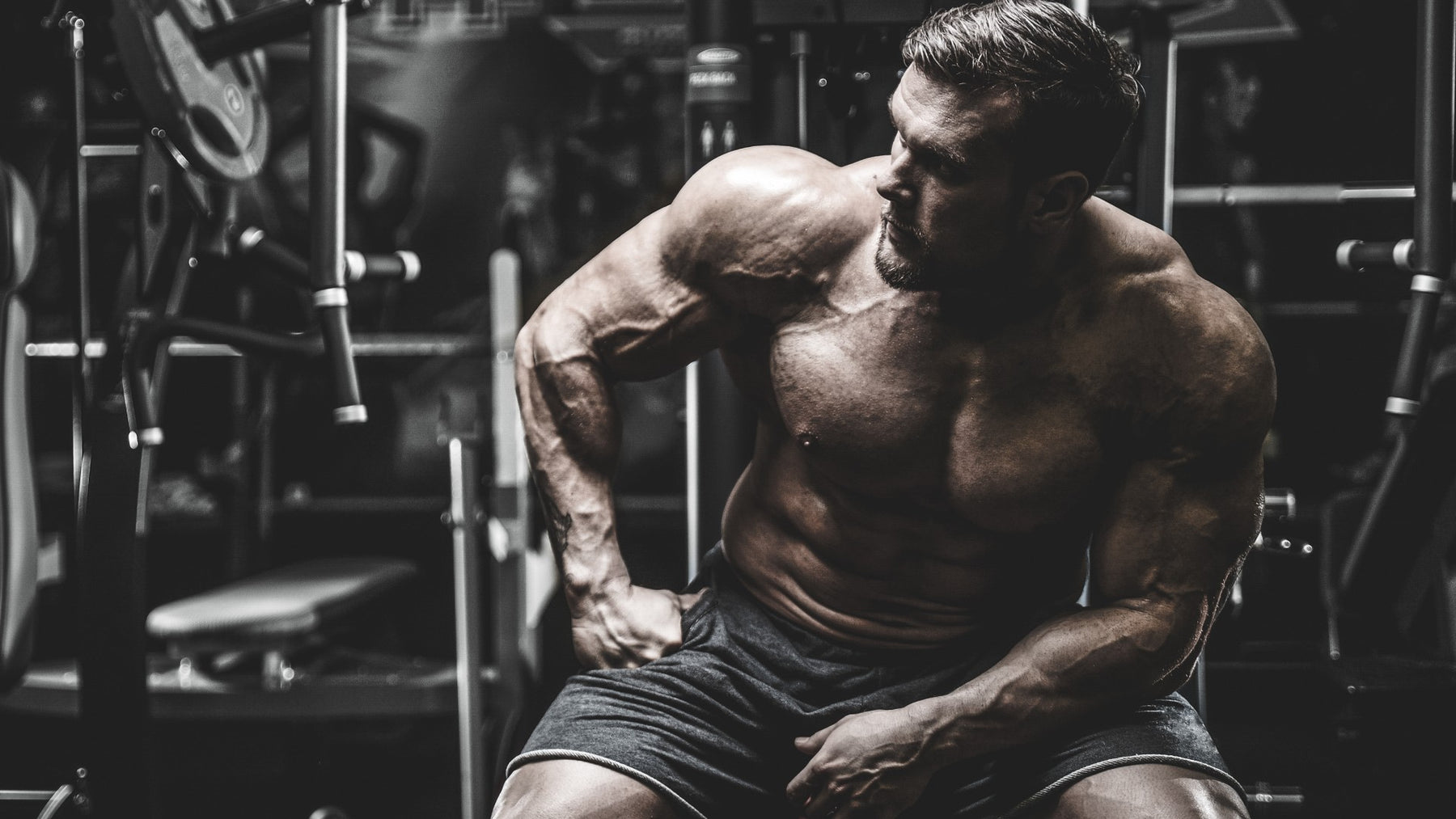 Using High Frequency Training for Superior Muscle Building Results