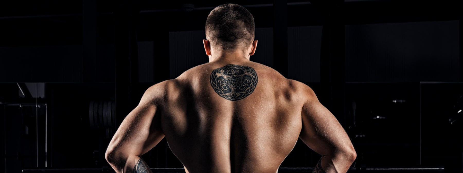 The 3 Best Back Workouts for Freaking Awesome Gains