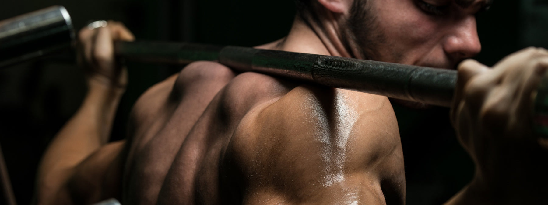 14 Muscle Building Basics for Better Results Now