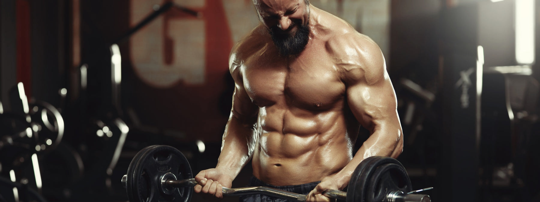 Power Beast Program: 3 Stage Powerbuilding Workout