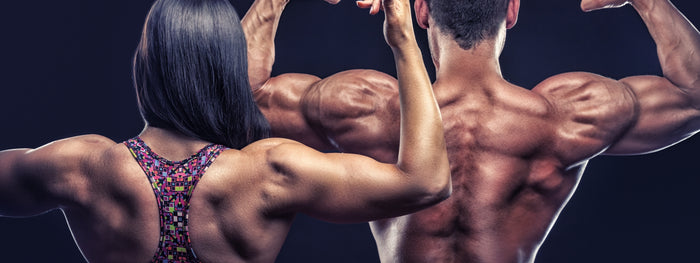 6 Best Goal-Oriented Back Workouts