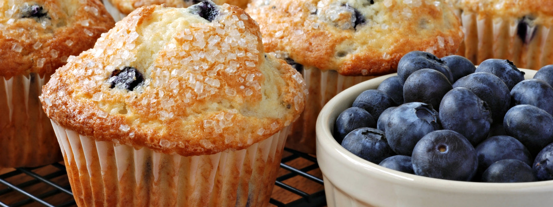 MTS Blueberry Muffin Protein Delights - 2 Easy Recipes