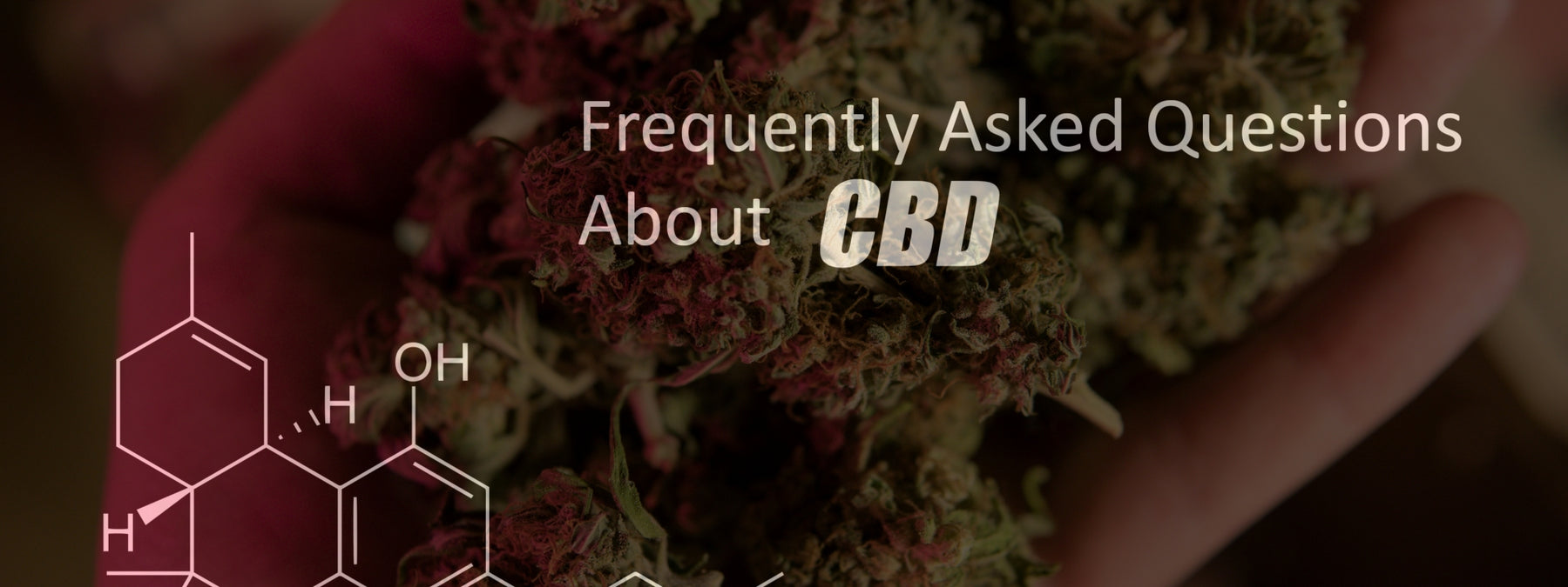 CBD Oil Supplementation - 16 Keys to Consider