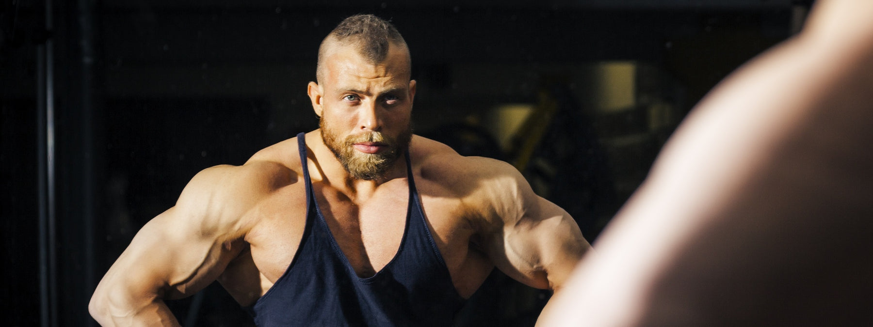 The Great Muscle Building Quiz of Gains! Can You Pass?