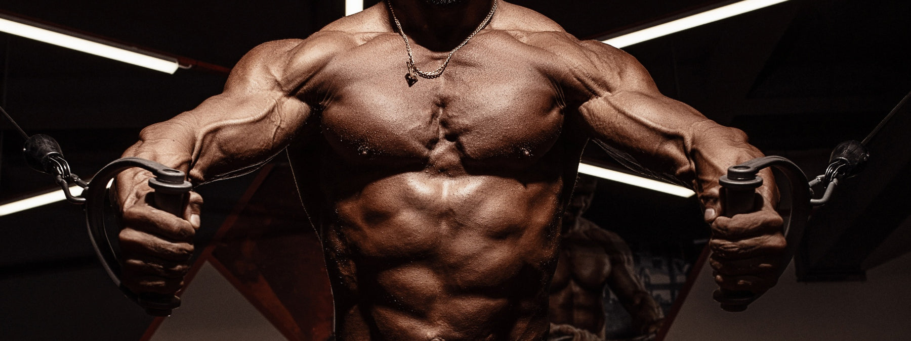 The Best Workout Routines - Our Top 10 Training Programs