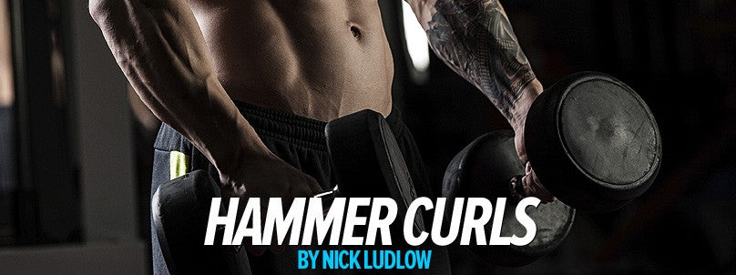 How to Perform the Hammer Curl