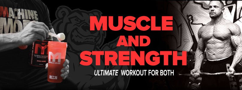 Muscle and Strength E-Book PDF - Free Download