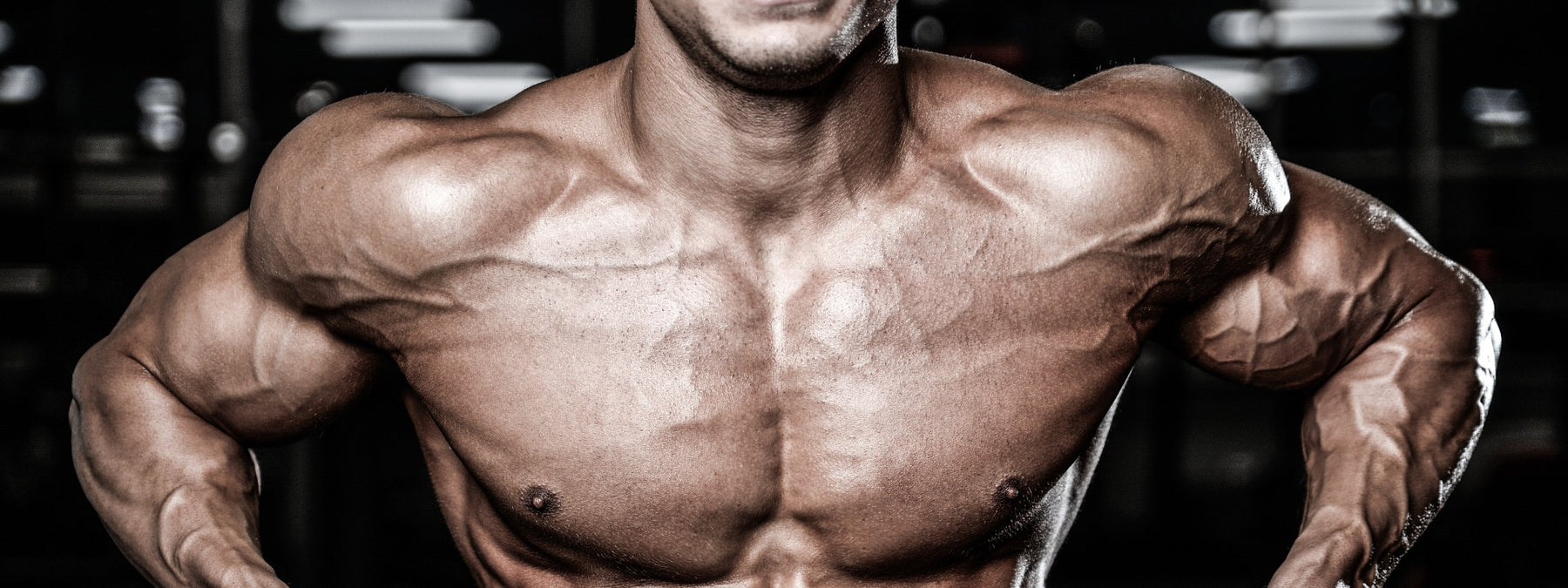 Block Training - Brief & Brutal Muscle Building Workouts