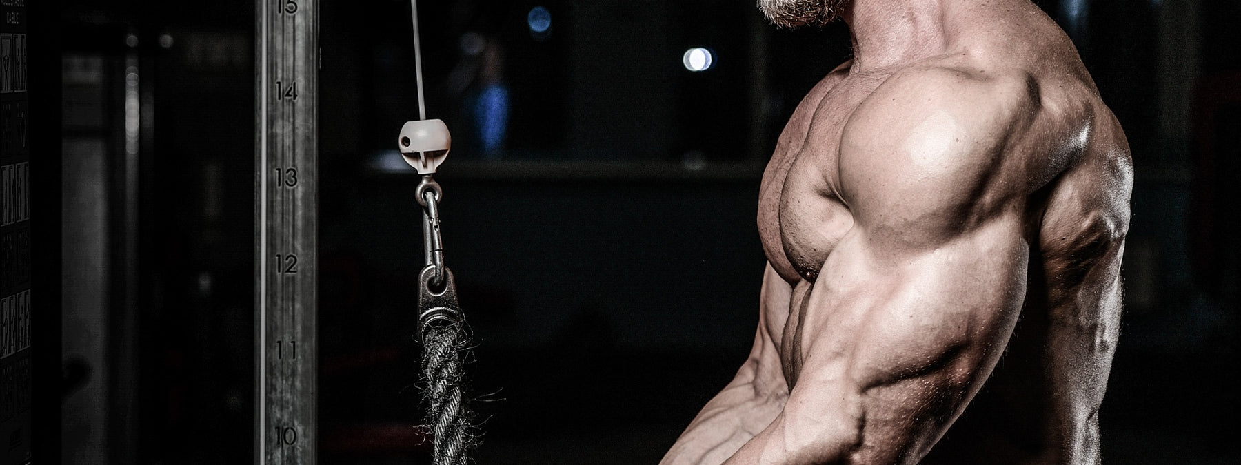 How to Grow the 5 Toughest Muscle Groups
