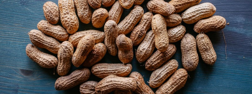 peanuts-and-aflatoxins-poisonous-protein