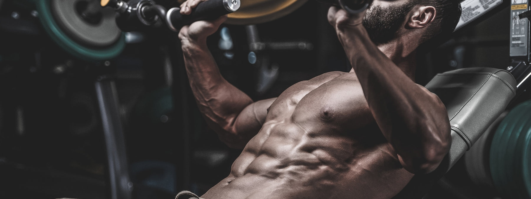 The 5 Perils Of Muscle Building (And 5 Practical Solutions)