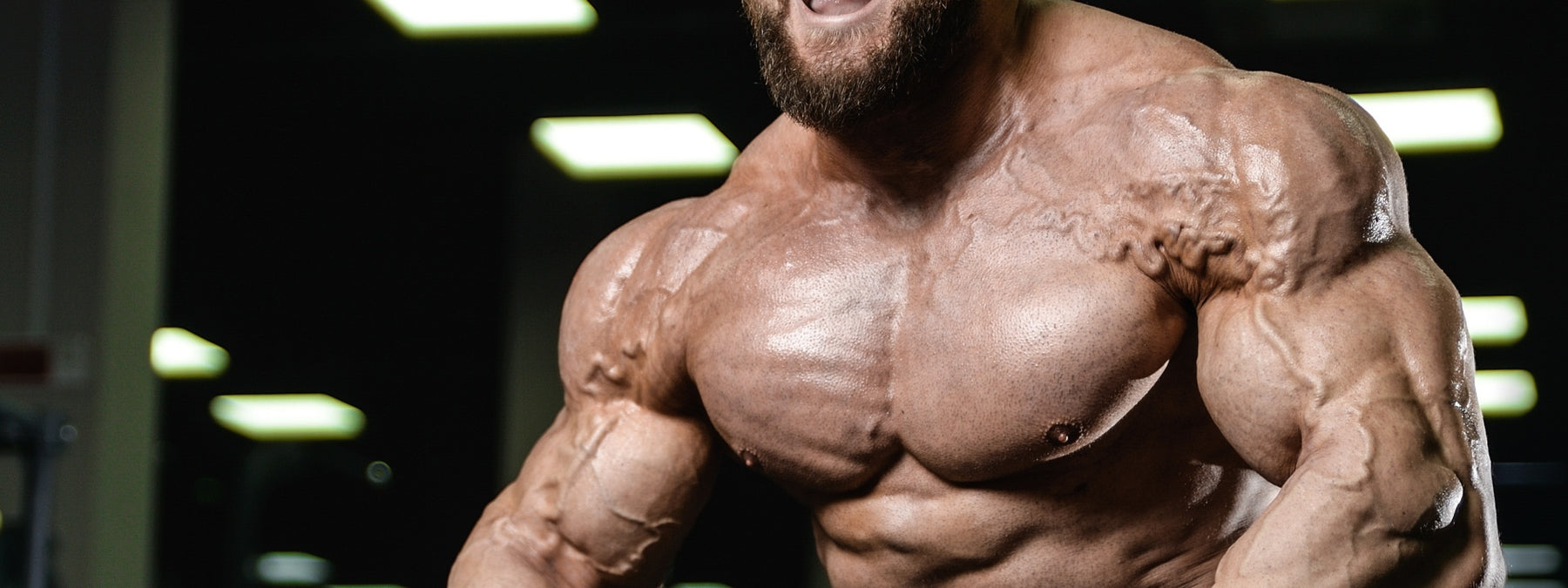 Build a Monster Powerbuilding: 3 Day Workout Routine