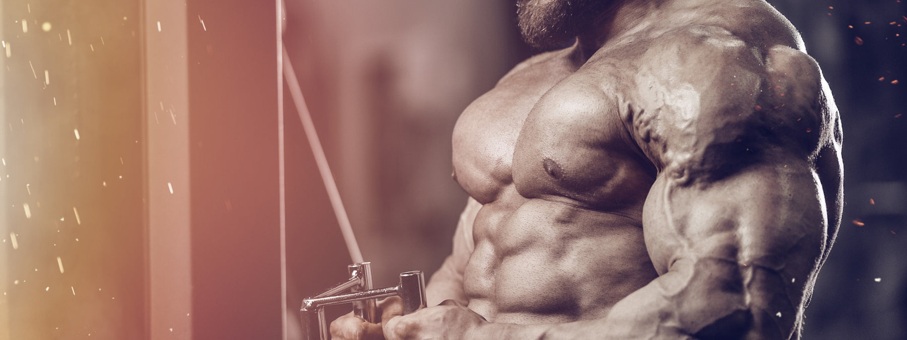 Build More Mass and Strength With Negatives