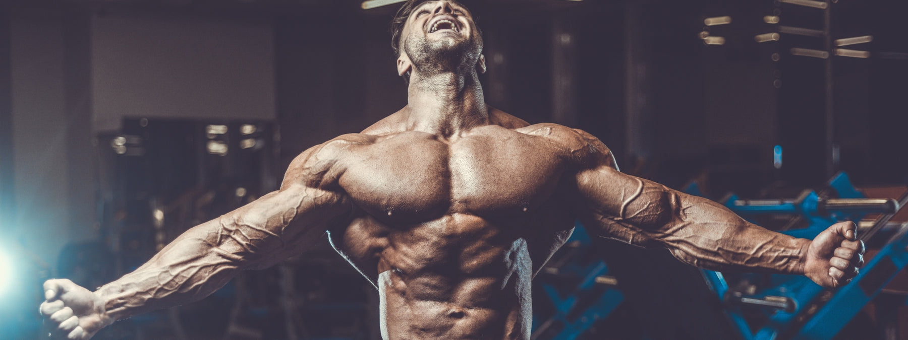 Build Bigger Traps With These 8 Exercises