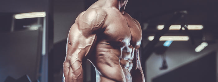 Kick-Start Your Triceps Size With These 3 Tips