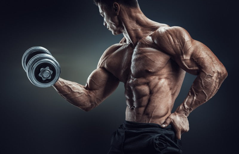 Aesthetic Workout - The Complete Anti-5x5 Bodybuilding
