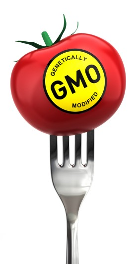 Are GMO foods bad?