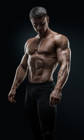 Determining Natural Bodybuilding and Arm Size Potential