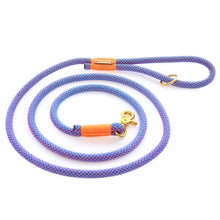 the foggy dog neon rope dog leash